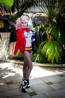 Harley Quin - 08-28-15